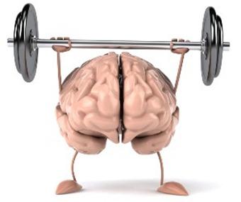 脑子更好使